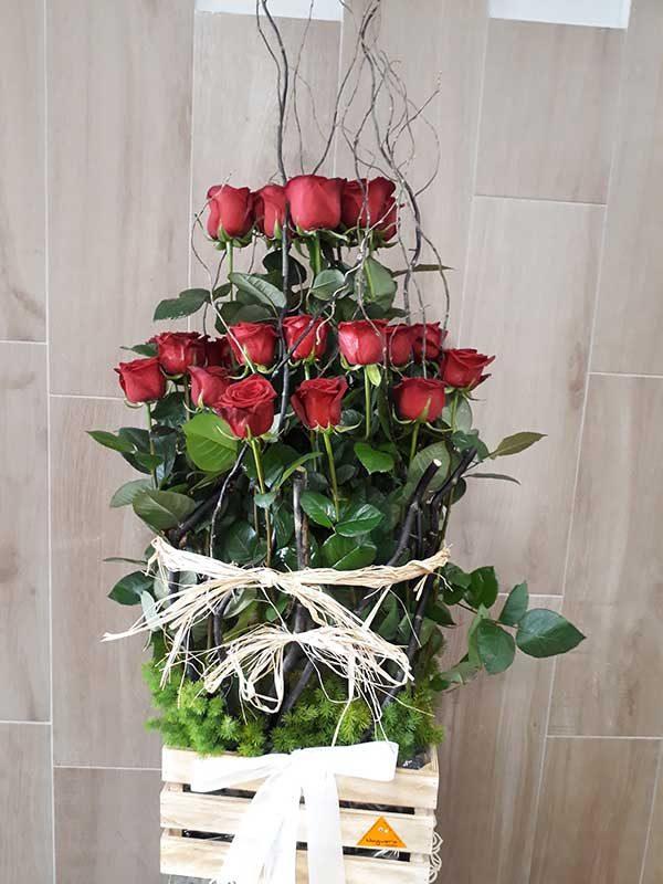 Caja-de-24-rosas